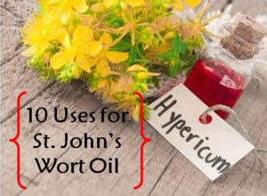 Photo of 10 Uses For St. John's Wort Oil